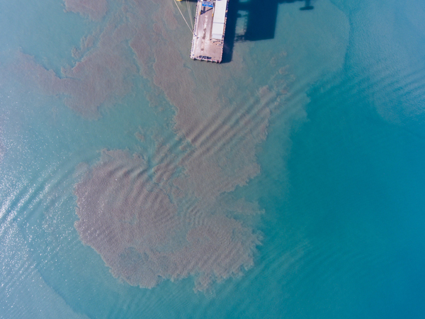 Oil pollution at pier